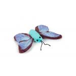 Бабочка голубая