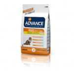 Advance Adult C&R