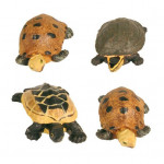 Набор гротов лягушки и черпахи