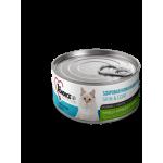 1st Choice Adult Skin&Coat wet Tuna/Chicken/kiwi